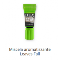 9 Miscela aromatizzante Leaves Fall 10 ml
